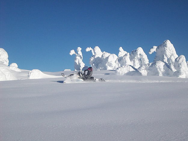 Photo of someone on a snowmobile