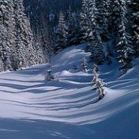 Creston, BC trails