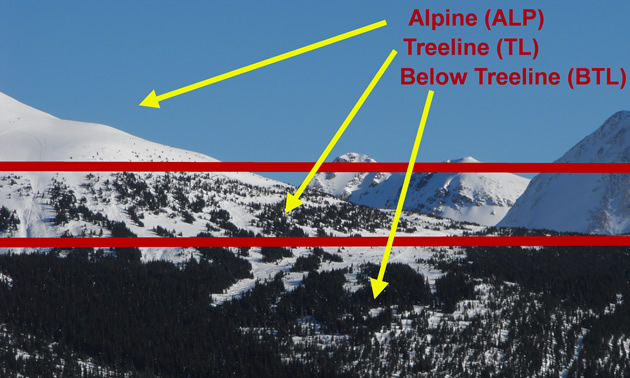 Examples of alpine, treeline and below treeline from an actual photo.