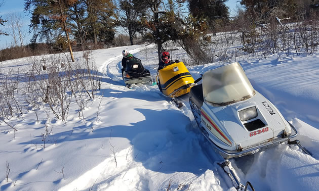 A trio of vintage sleds on an Edmonton area trail.