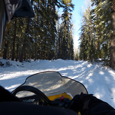 Looking over a sledder's shoulder at the trail going through heavily wooded forest.