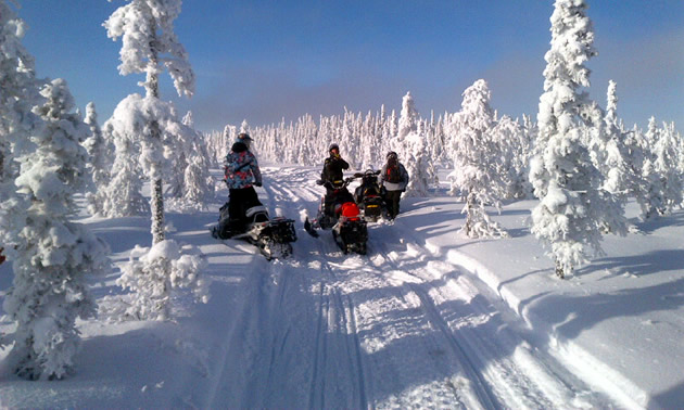 Three snowmobilers stopped on a very snowy trail in Hudson Bay.