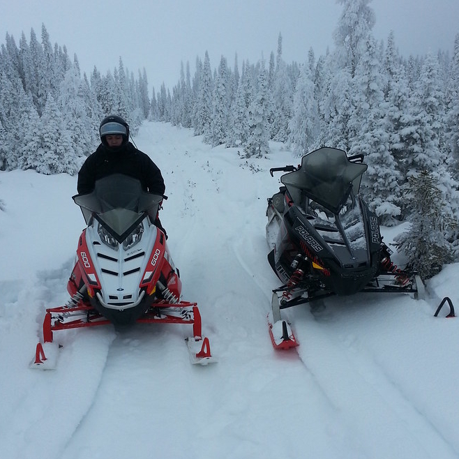 two snowmobilers on a trail