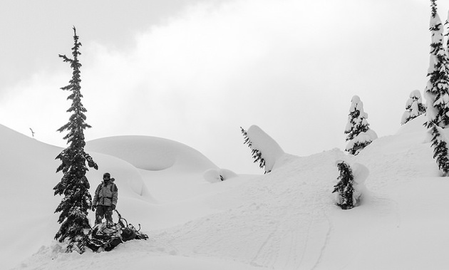 Jake Bauer standing in fresh powder.
