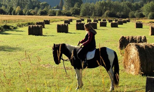 Julie-Ann Chapman on her wild mustang Fraser in a hay field.