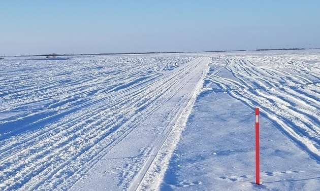 Shown is a snowy Saskatchewan field with snowmobile tracks crisscrossing through it.