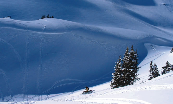 Sledding terrain with tracks in the snow