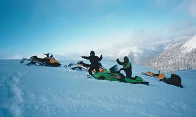 People on a snowy hill on sleds