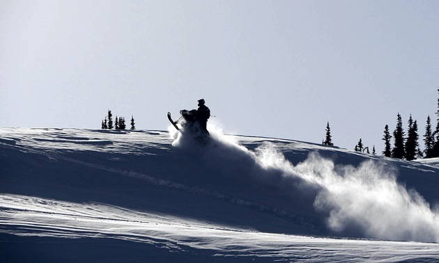 An outline of a sledder jumping with powder spraying behind him.