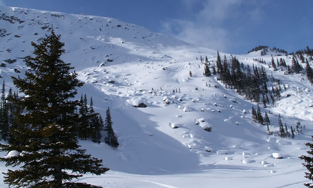 A slope with snow but rocks and trees are exposed.