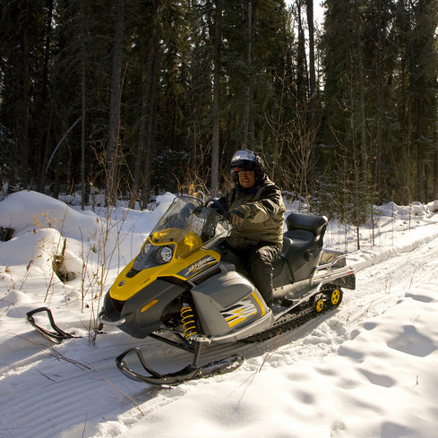 A Prince Albert snowmobiler is out on a wooded trail.