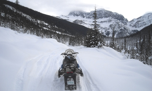 Richard Douslin's sled on a trail near Valemount, B.C.