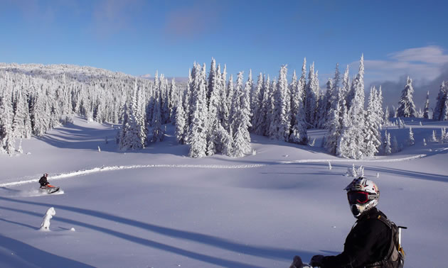 Photo of a snowmobiler in the Shuswap