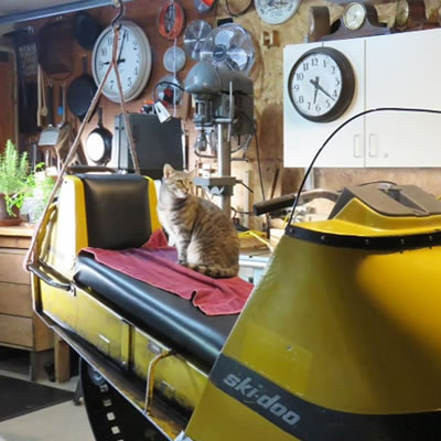 A cat sitting on a vintage Ski-Doo