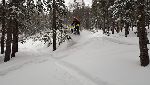 The CMX Snow Bike's unique dual front skis allow for better handling and flotation when you need it most.