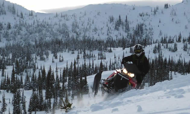 A sledder riding toward the camera on a red sled.