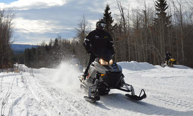 A snowmobiler on a Polaris RMK riding up Whitecourt trails.