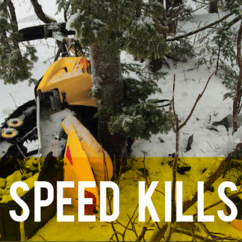A snowmobile wrapped around a tree. Picture used for Manitoba's Snoman Speed Kills Campaign.
