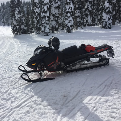 Picture of snowmobile that was stolen.