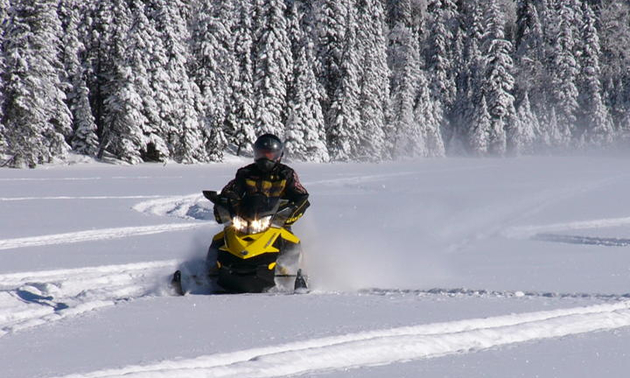 sledder in Swan River Manitoba