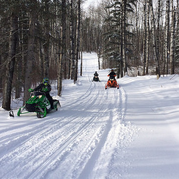 Three sleds riding on a trail in the Swan Valley.