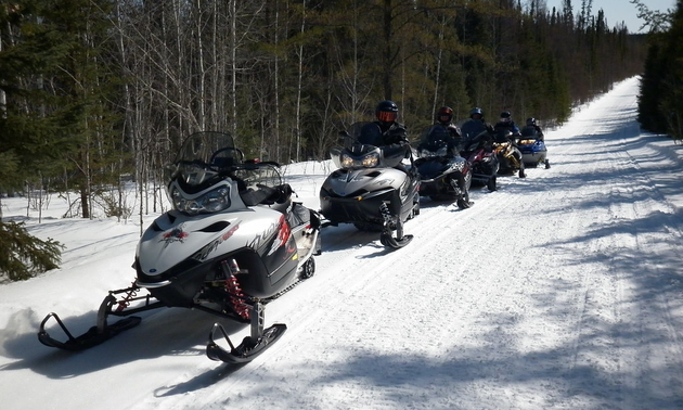 sleds lined up ready to head out on the trails