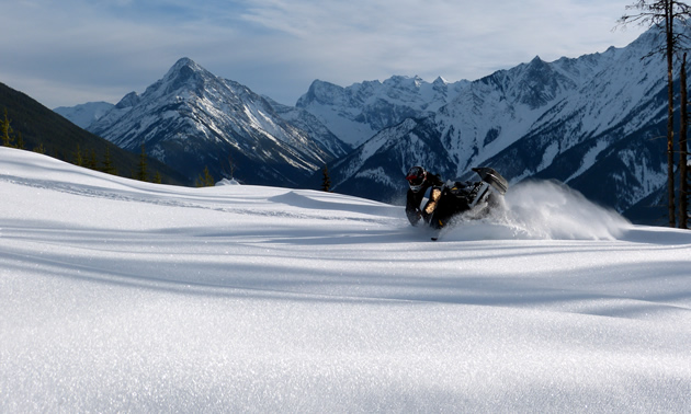 A snowmobiler lays down a carve in Golden.