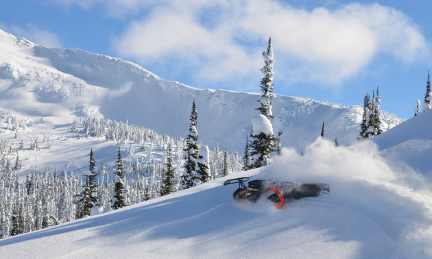 A sledder is cruising through deep dry pow with bluebird skies in Valemount.