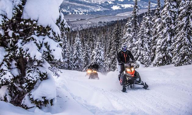 Snowmobilers trail riding up Yanks Peak.